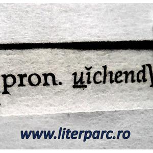 Transcrierea fonetică a anglicismului weekend