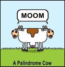 """""""Definiția"""" palindromului"""